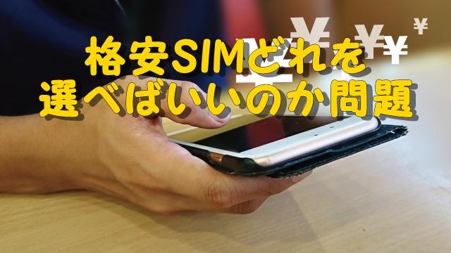 格安SIMを選ぶ人