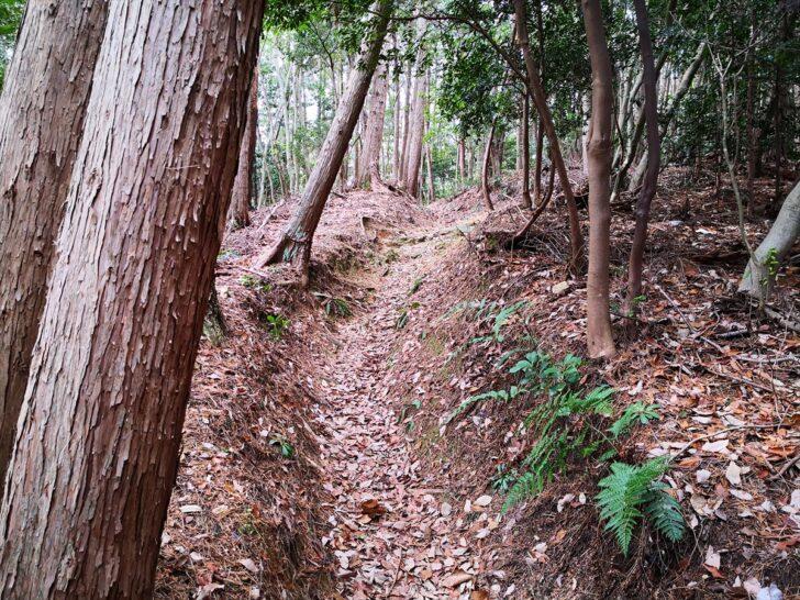 弥勒山登山ルート